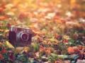 Новая номинация фотоконкурса к юбилею района