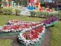Конкурс цветочных клумб «Калининский цветущий»